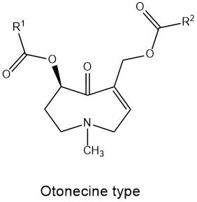 Otonecin_type